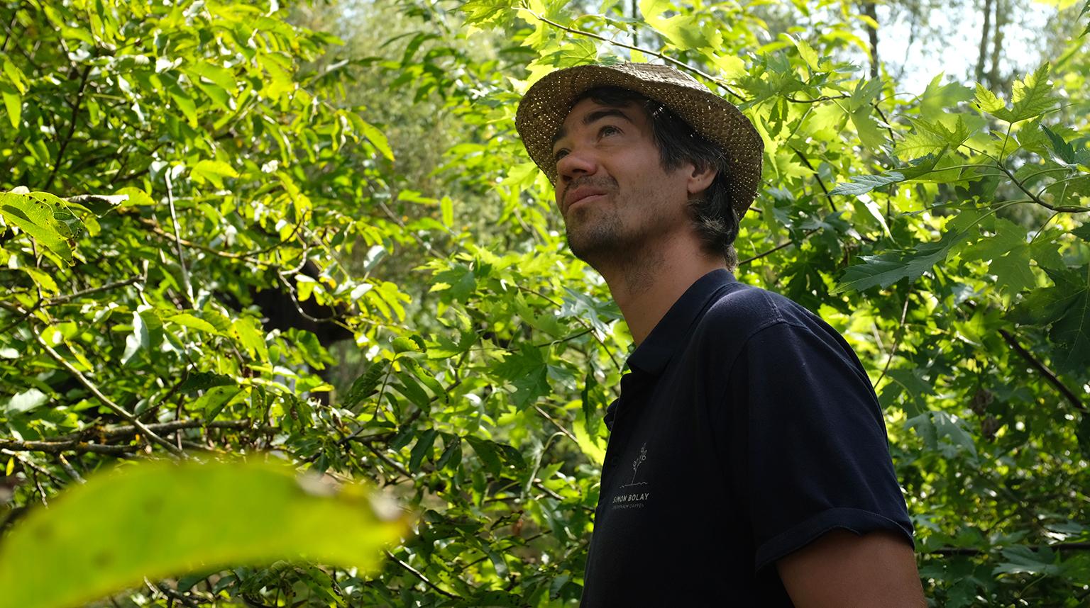Simon Bolay Gartenbau